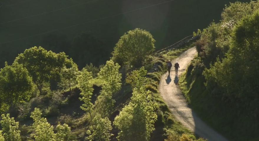 4-camino landscapes b